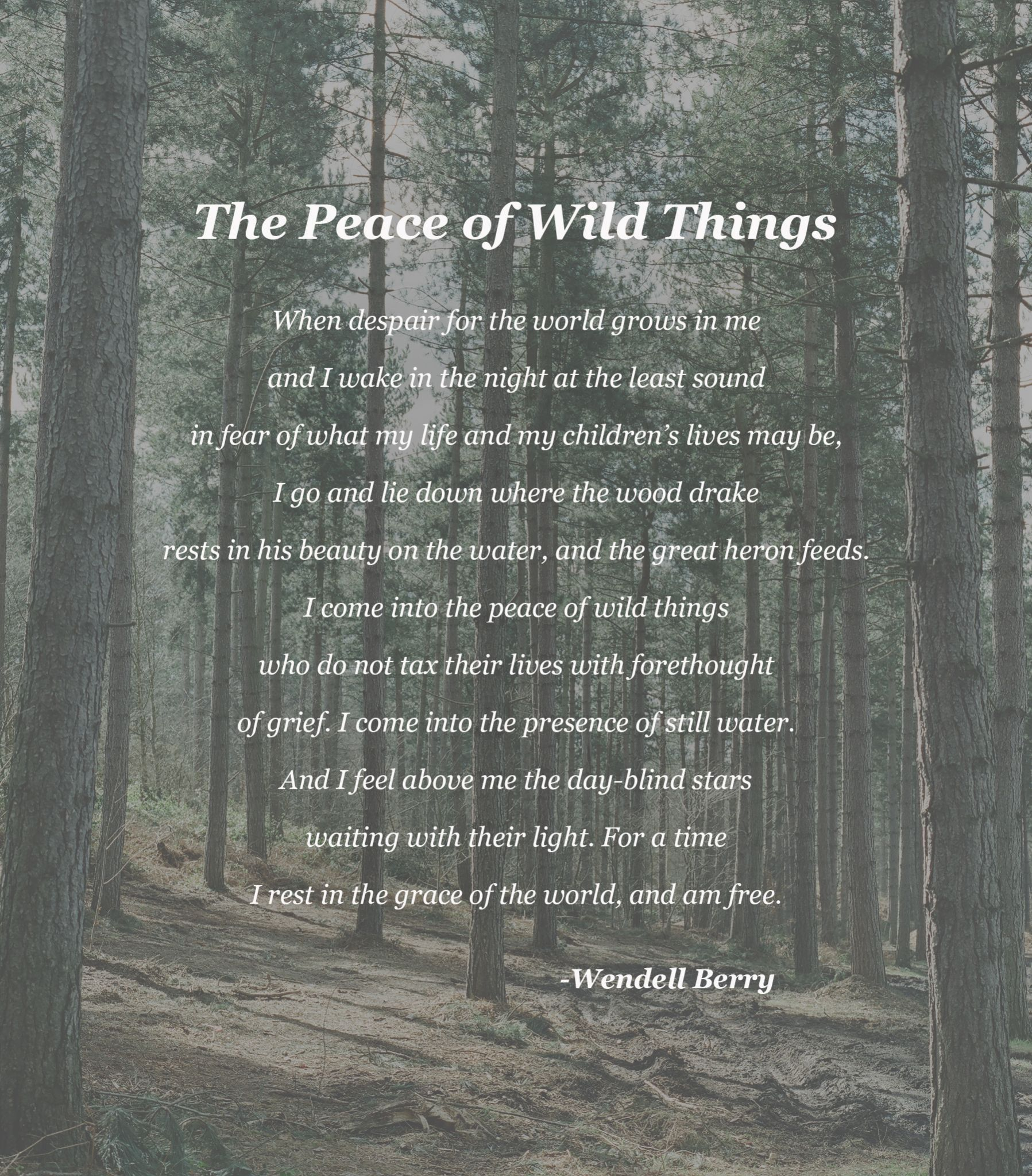 wendell berry poems Enjoy the best wendell berry quotes at brainyquote quotations by wendell berry, american poet, born august 5, 1934 share with your friends.